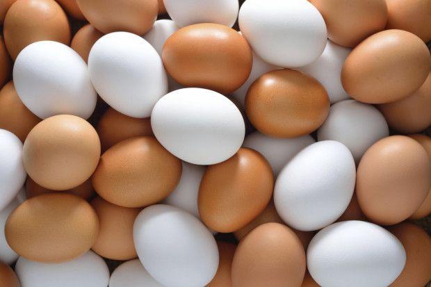 Яйце інкубаційне кохінхіна карликового!!!