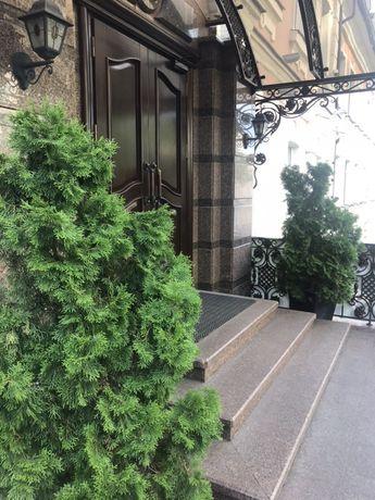 Без % Здам Офіс в БЦ на Сагайдачного, Ігорівська, Боричів тік Поштова