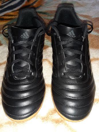 Buty/halówki Adidas Copa 40