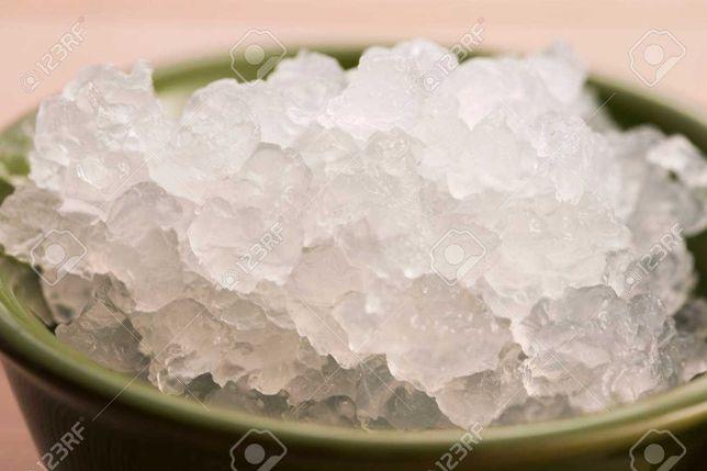 GRÁTIS - Starter Kefir de água