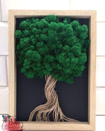 Drzewo życia z mchu -  różne okoliczności, chrobotek, podziękowanie