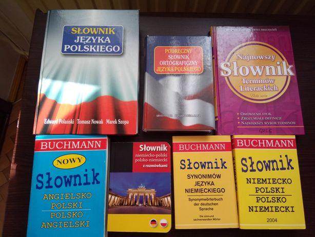 Słownik języka polskiego, ortograficzny, terminów literackich