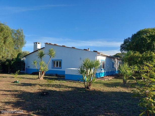 Quinta | Beja | 1.75 hectares