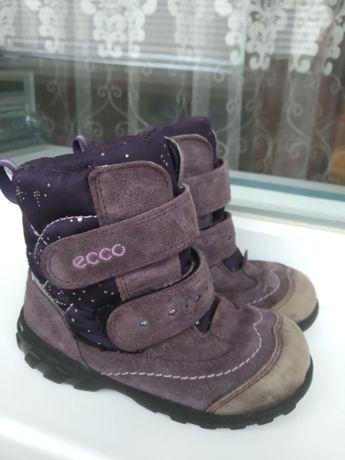 Зимние ботинки сапожки Ecco