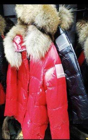 Missfoto czerwona red kurtka futro jenoty naturalne