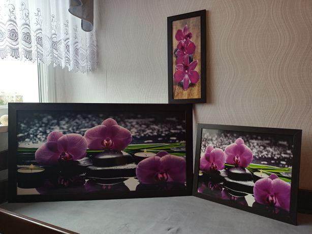 Obrazy na ścianę 3 Sztuki Nowe Piękne z ramą