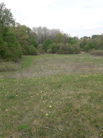 (lg) Продається земельна ділянка