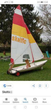 Barco Skeltic usado