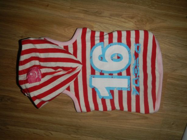 Ubranko dla pieska York Shih Maltanczyk z kapturem