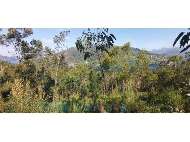 Espetacular terreno com vistas para a barragem da Caniçada