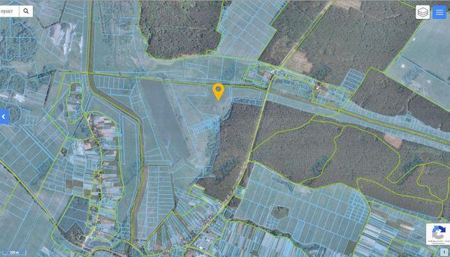 Продаю участок 7 гектар в 32 км от Киева, возле Макарова