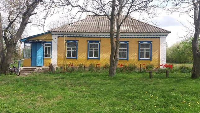 Срочно продам дом в с.Камышня, Миргородского района, Полтавской обл