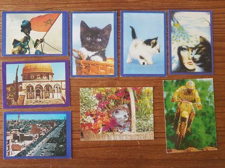 Lote de 8 calendarios de bolso
