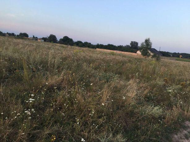 Продається земляна ділянка село Діброва