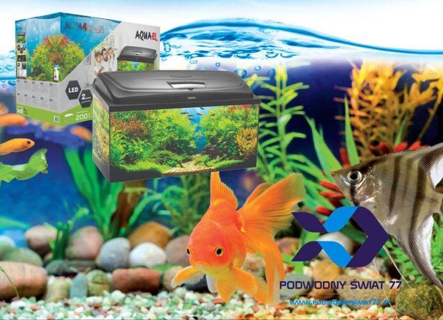 Zestaw akwarystyczny Aquael Aqua4Home (170/200l) - nowy - akwarium