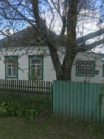 Продам дом с,Орловщина