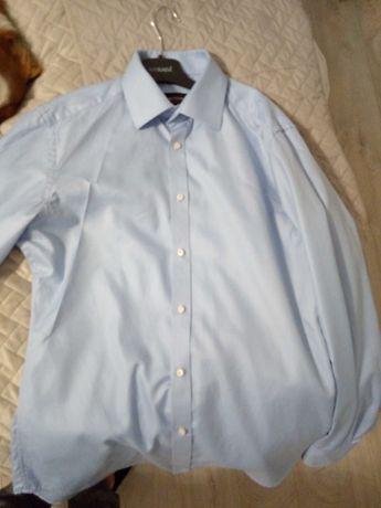 Koszula Bytom piekna