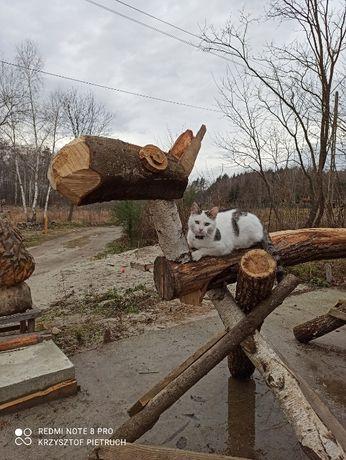 Konik drewniany do ogrodu, rzeżba interaktywna dla dzieci