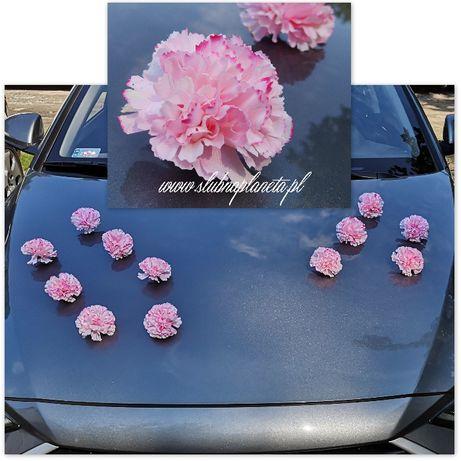 Goździki na przyssawkach różowe 12 szt