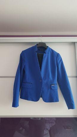 Garnitur damski niebieski spodnie i marynarka rozm. 36 Cotton Club