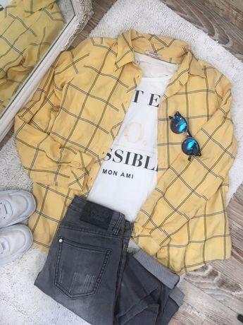 Рубашка + футболка + штаны