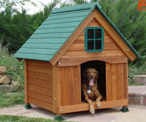 Будки для Собак, Будьки будь-яких розмірів!