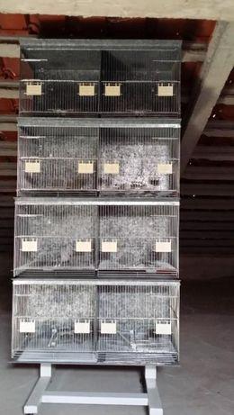 Gaiola/Viveiro para Criação de Canários/Outras Aves