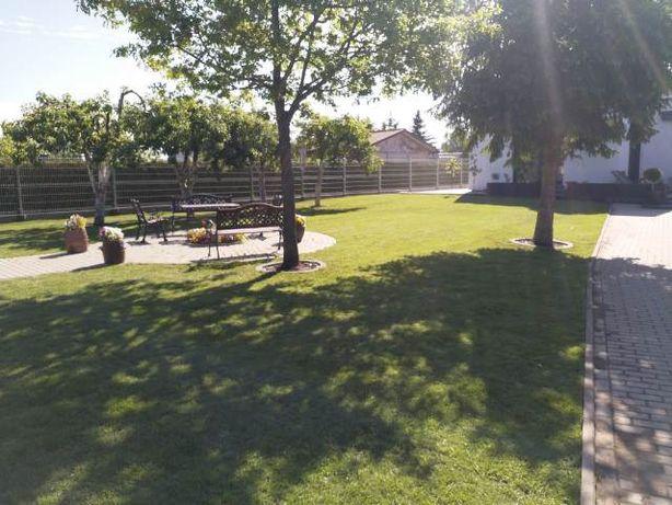 Zakładanie trawników z rolki, siewu, usługi ogrodnicze, nawodnienia