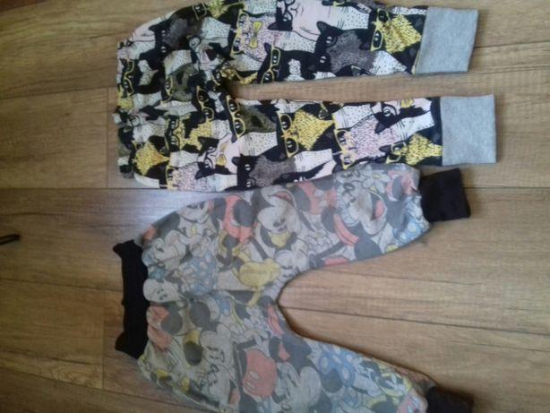 Modne spodnie w koty i myszke mickey 98/104 cm + 4 szt. Gratis