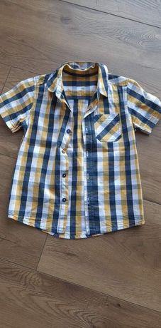 Koszule dla chłopca  122 cm