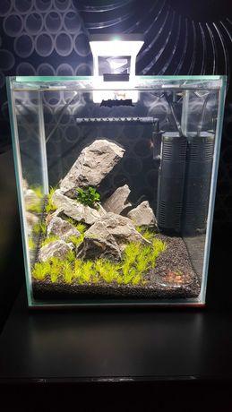Krewerkarium Aquael Shrimp Set 20L