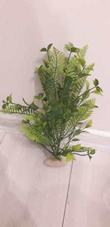 Roślina do akwarium- sztuczna