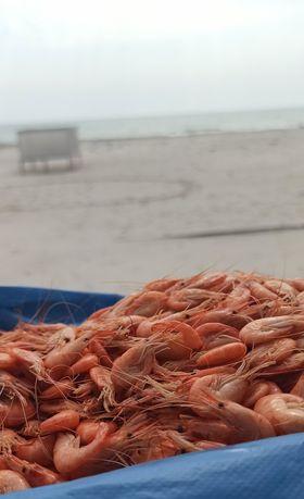креветка черноморская  средне- крупная  пакет  6 кг цен 650 грн