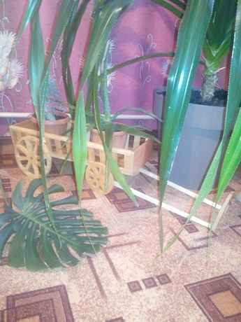 Подставка для цветов, вазон, телега