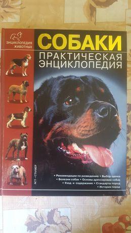 Собаки Практическая энциклопедия