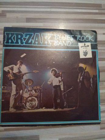 Płyta winylowa Krzak