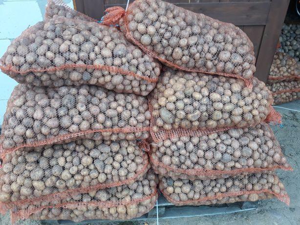 Sprzedam ziemniaki drobne paszowe