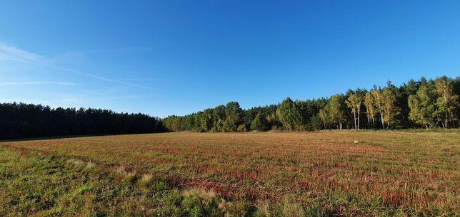 Ziemia rolna lub siedliskowa
