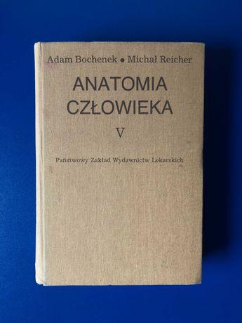 Bochenek, Reicher - Anatomia Człowieka Tom V