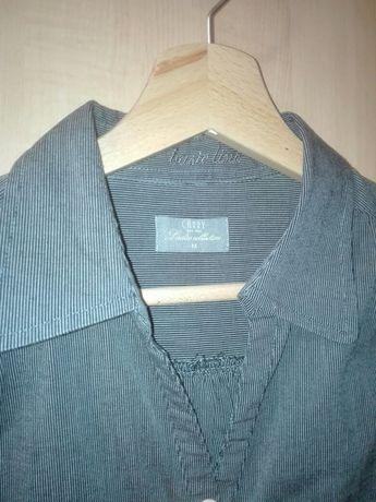 Koszula basic line CARRY