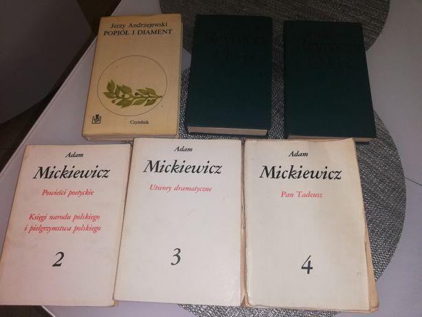 Potop, Adam Mickiewicz Powieści poetyckie.