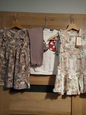 Zestaw Newbie+ Zara 98-104 limited sukienka, króliczki.