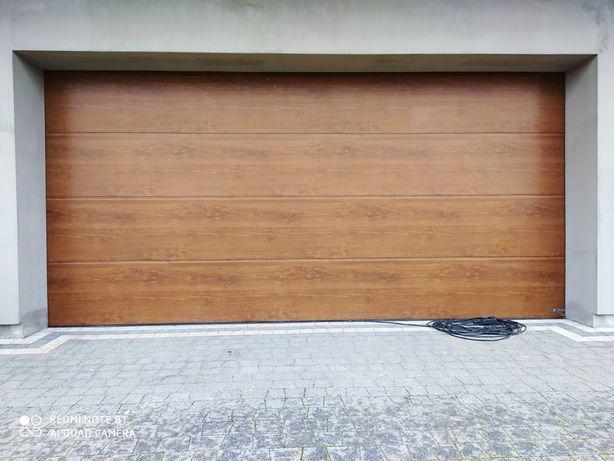 Brama garażowa z napędem Wiśniowski złoty dąb 455x210