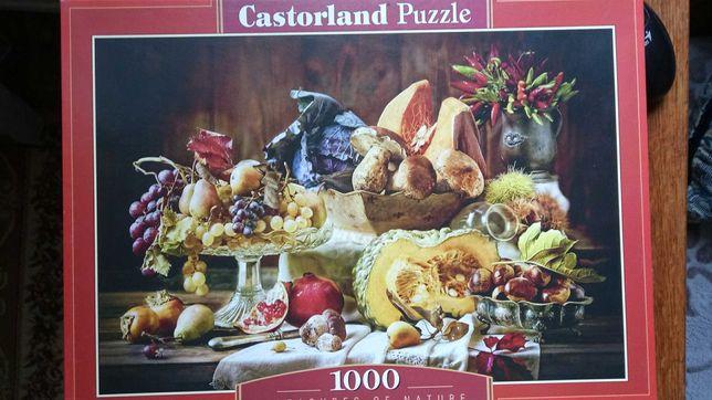 пазл Castorland на 1000 эл.