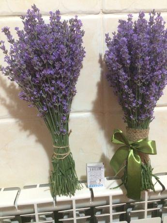 крымская лаванда сухая и свежая нового урожая-букеты на заказ