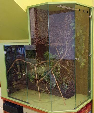 Terarium wyposażone