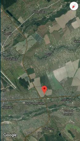 Власник ТЕРМІНОВИЙ  продаж земельної ділянки під забудову Драгомирчани