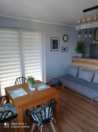 Mieszkanie bezczynszowe pierwsze piętro rezerwacja