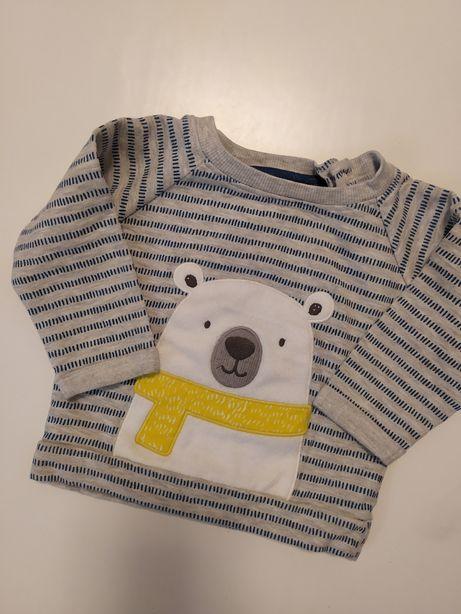 Bluza miś niemowlęca chłopięca 3-6 miesięcy