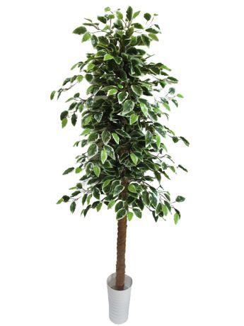 Sztuczne Drzewko Beniamin Fikus Benjamin Kwiat 160